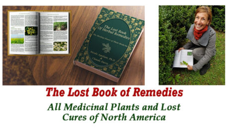the-lost-book-of-remedies-fb